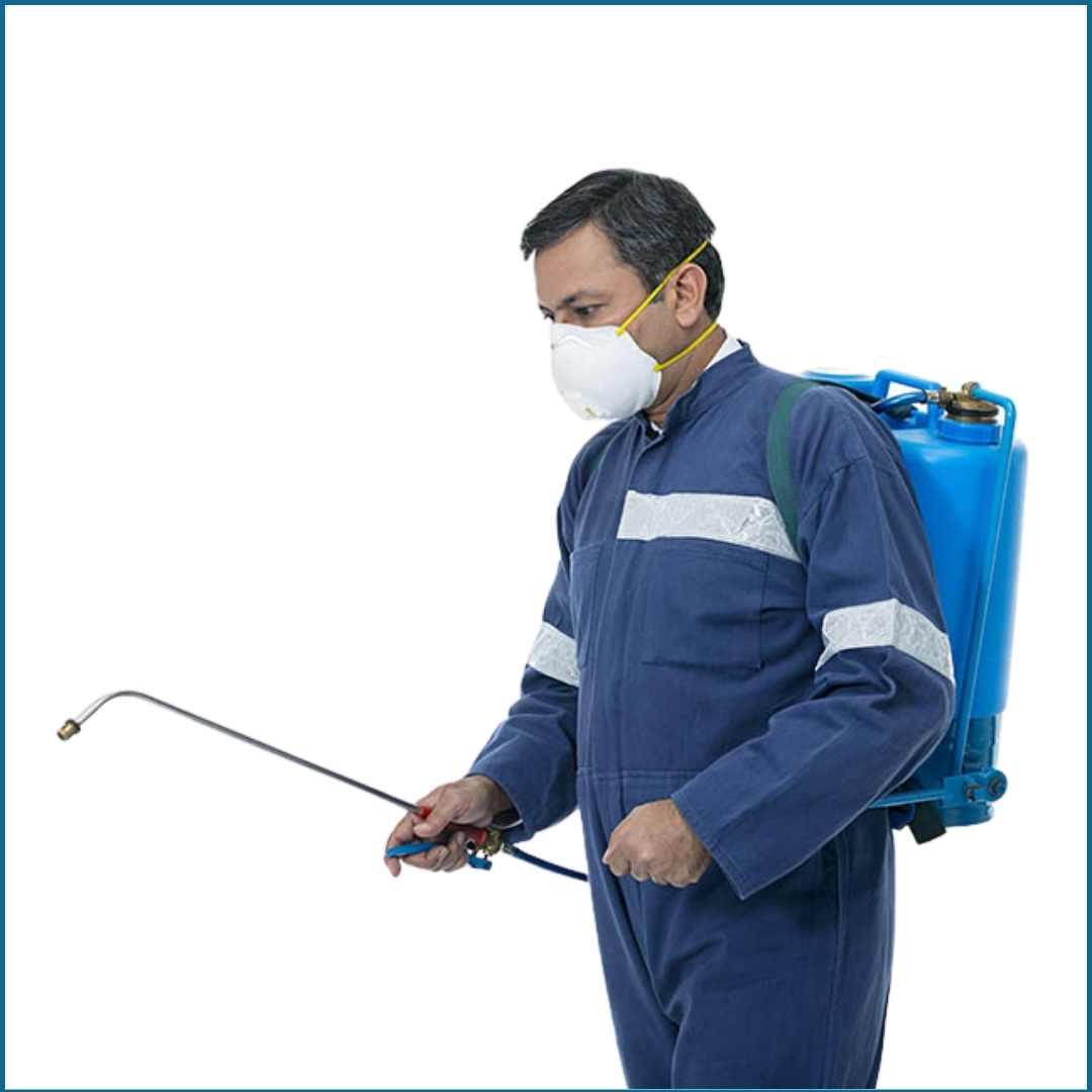 pest control service in mumbai