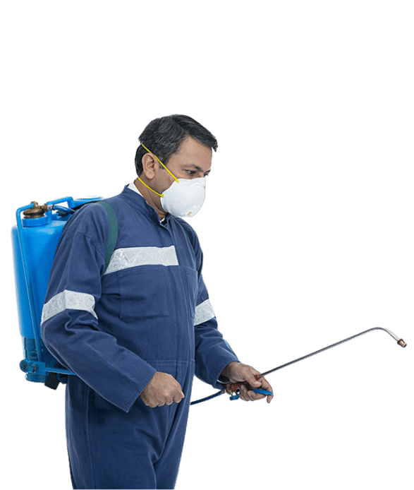 pest control service in Titwala