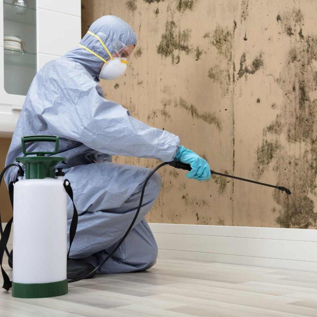 pest control service in Mulund